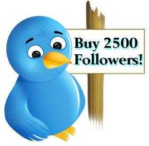 Best option to buy twitter followers